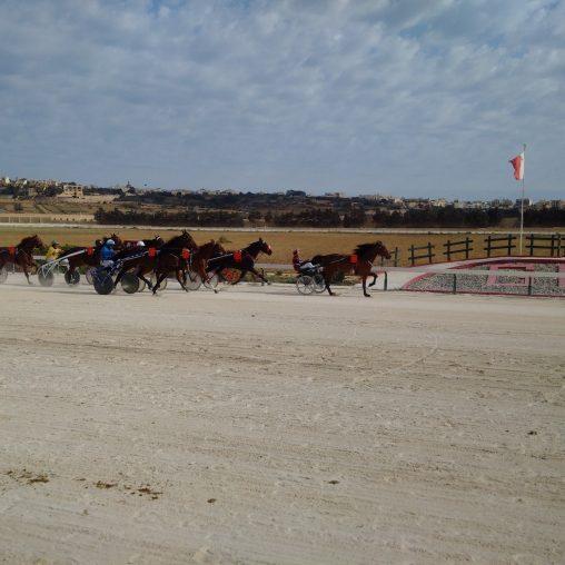 Gozo Racecourse